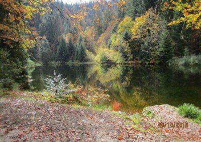 lac des corbeaux (44)