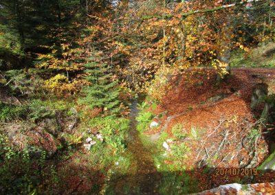 lac des corbeaux (45)